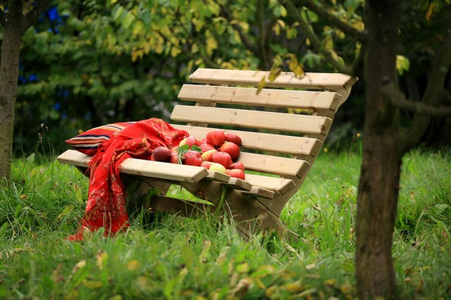 _benches-lilly-gb-1e