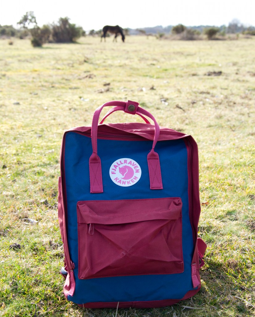 fjällräven kanken mini backpack review