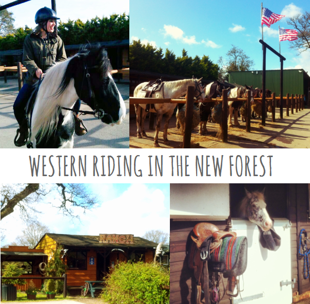 Western riding in the New Forest