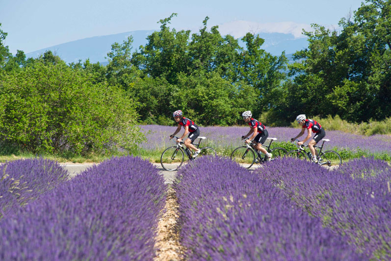 Eurostar cycling holiday