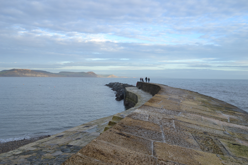 19 What To Do In Lyme Regis