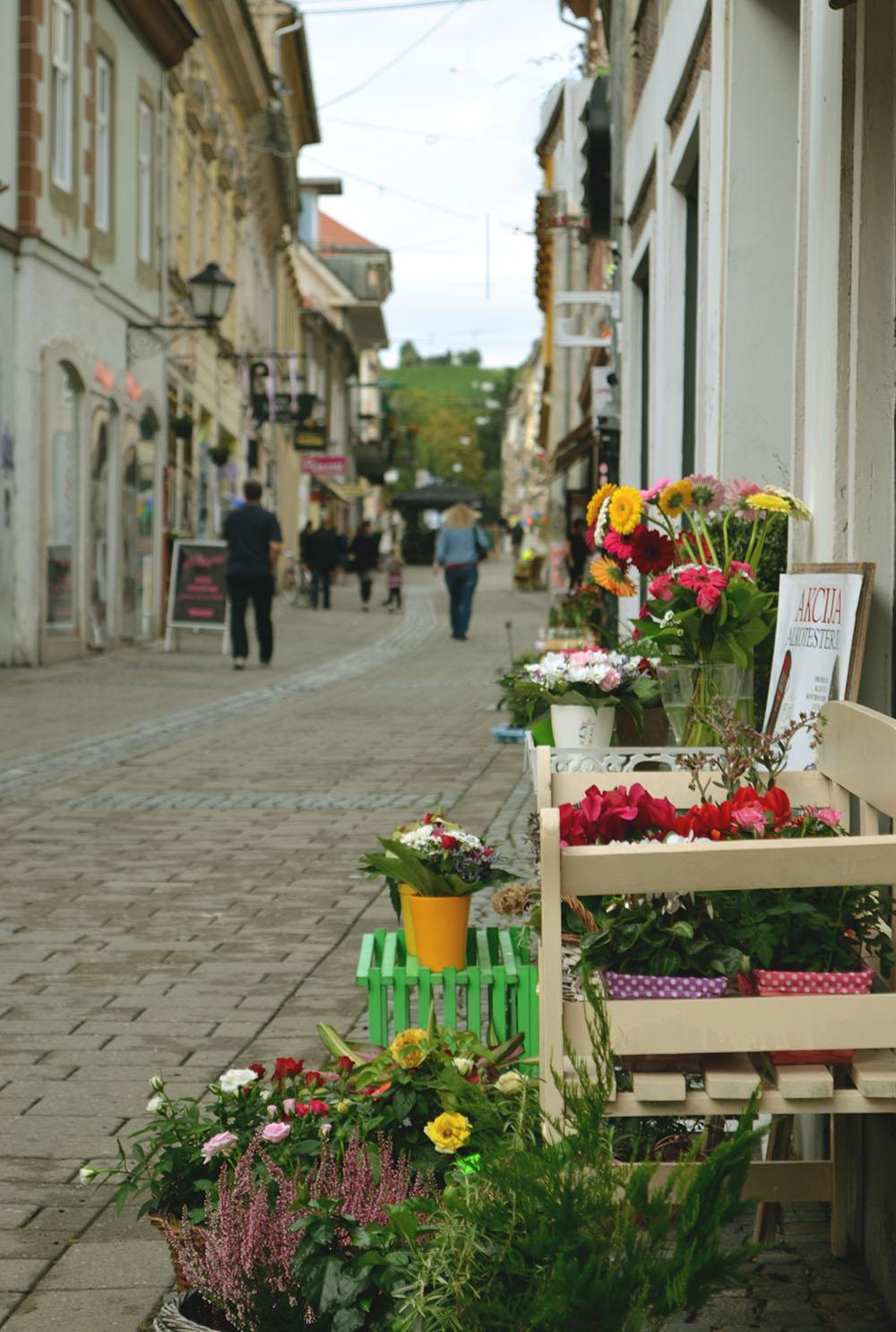 Maribor travel guide
