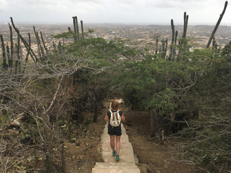 Active guide to Aruba