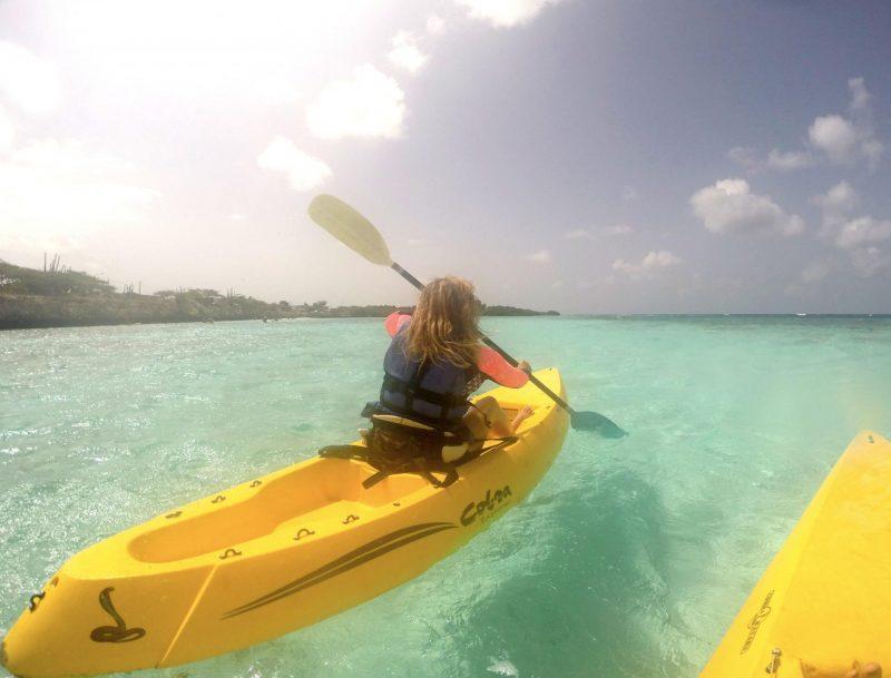 Active guide to Aruba