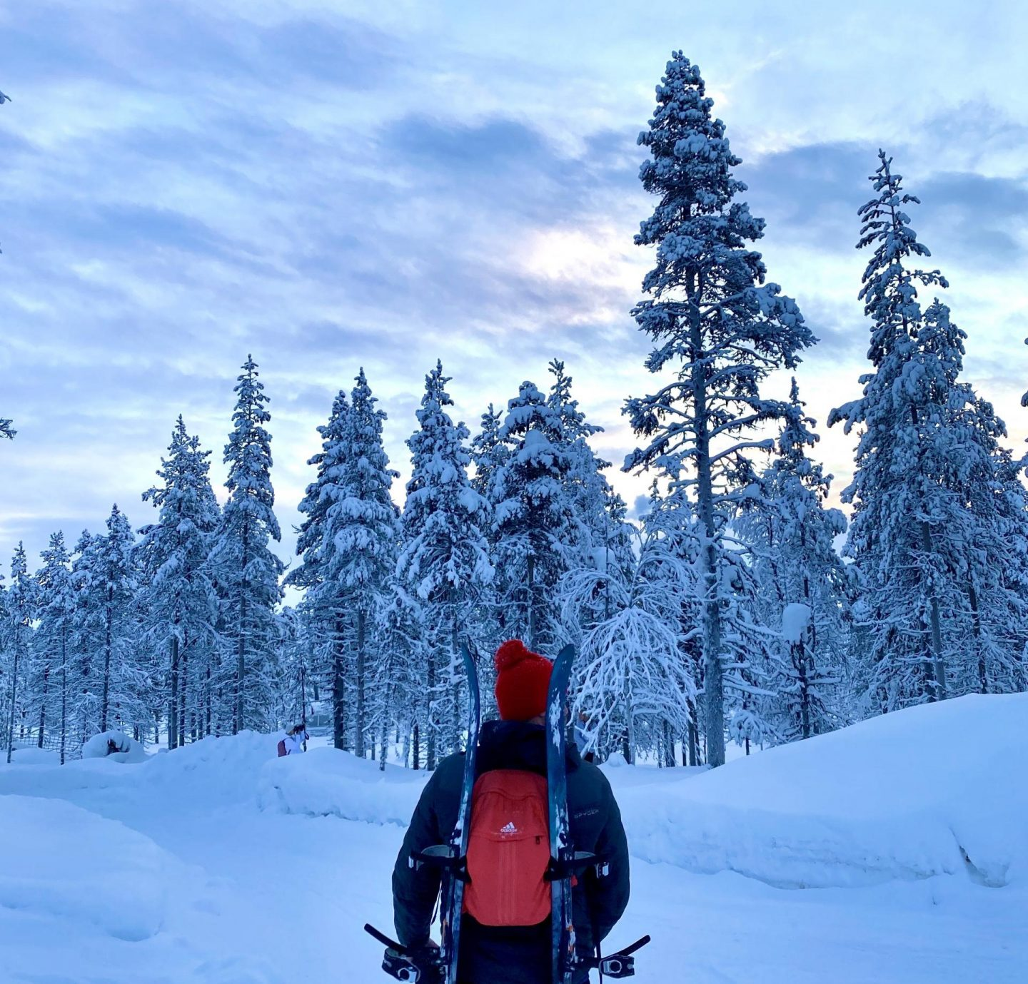 A Lapland adventure with Inghams