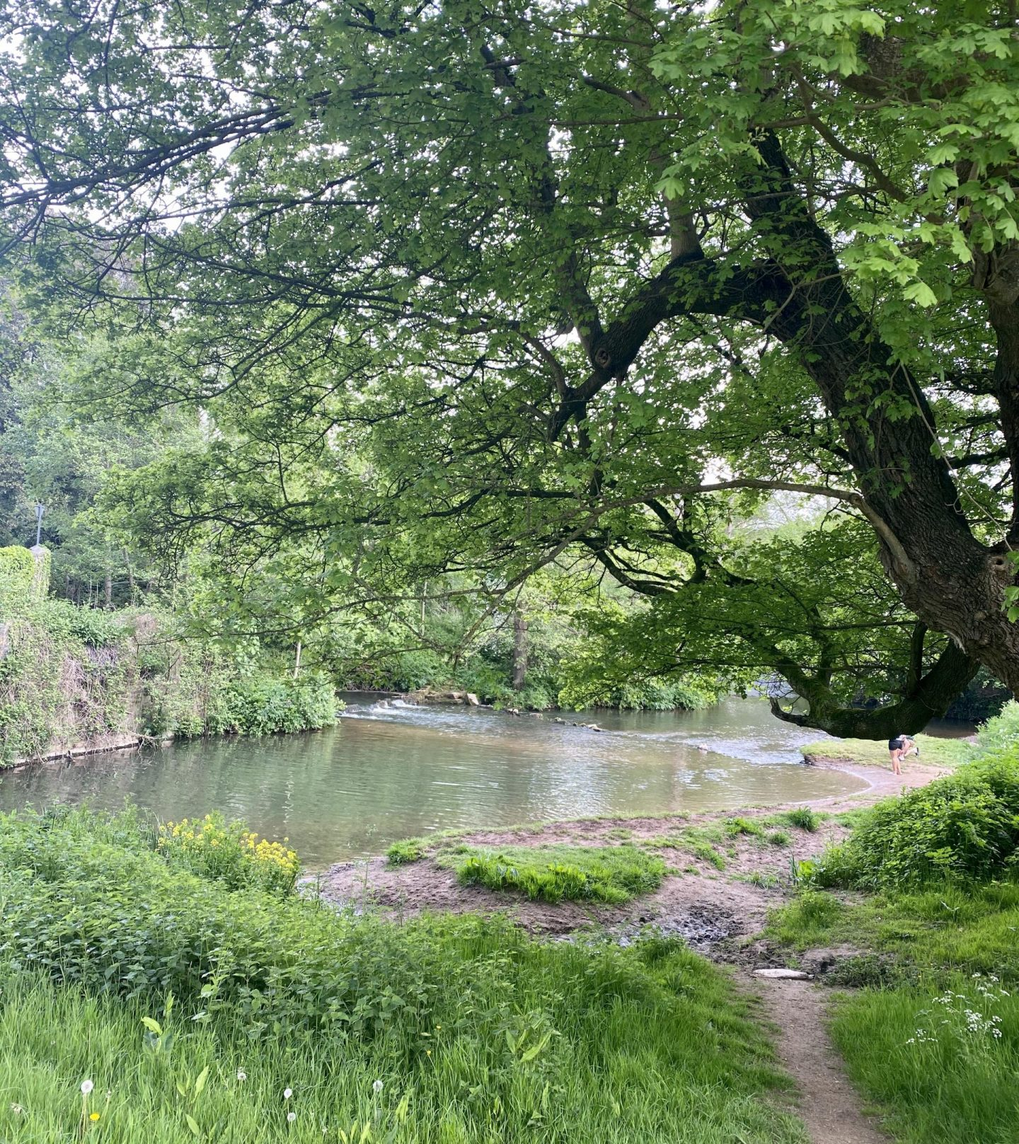 Wild Swimming Near Bristol   Places To Swim Less Than An Hour Bristol Publow