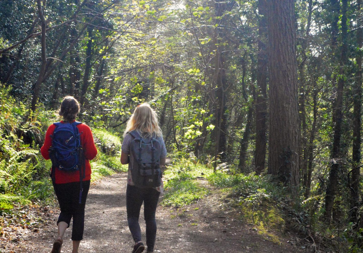 The joy of local adventures / Go local - how adventures close to home can make us happy